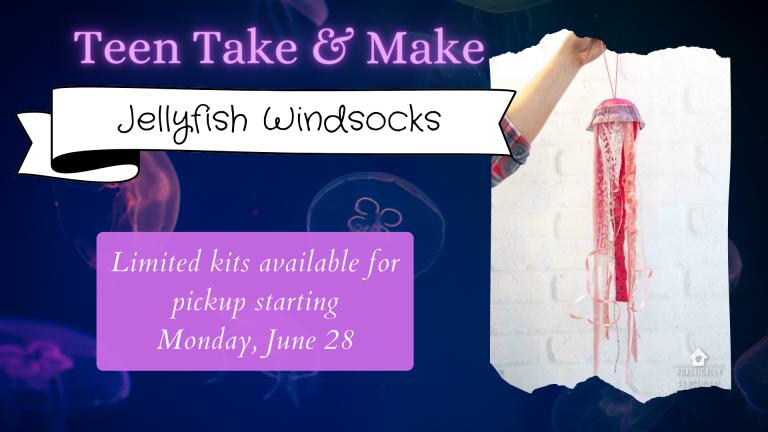 June 2021 Teen Take & Make Jellyfish Windsocks
